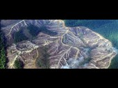 Answers for Deforestation in the 21st century - IELTS